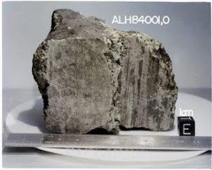 The meteorite ALH84001